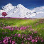 Afslappet skiferie i Wagrain Østrig